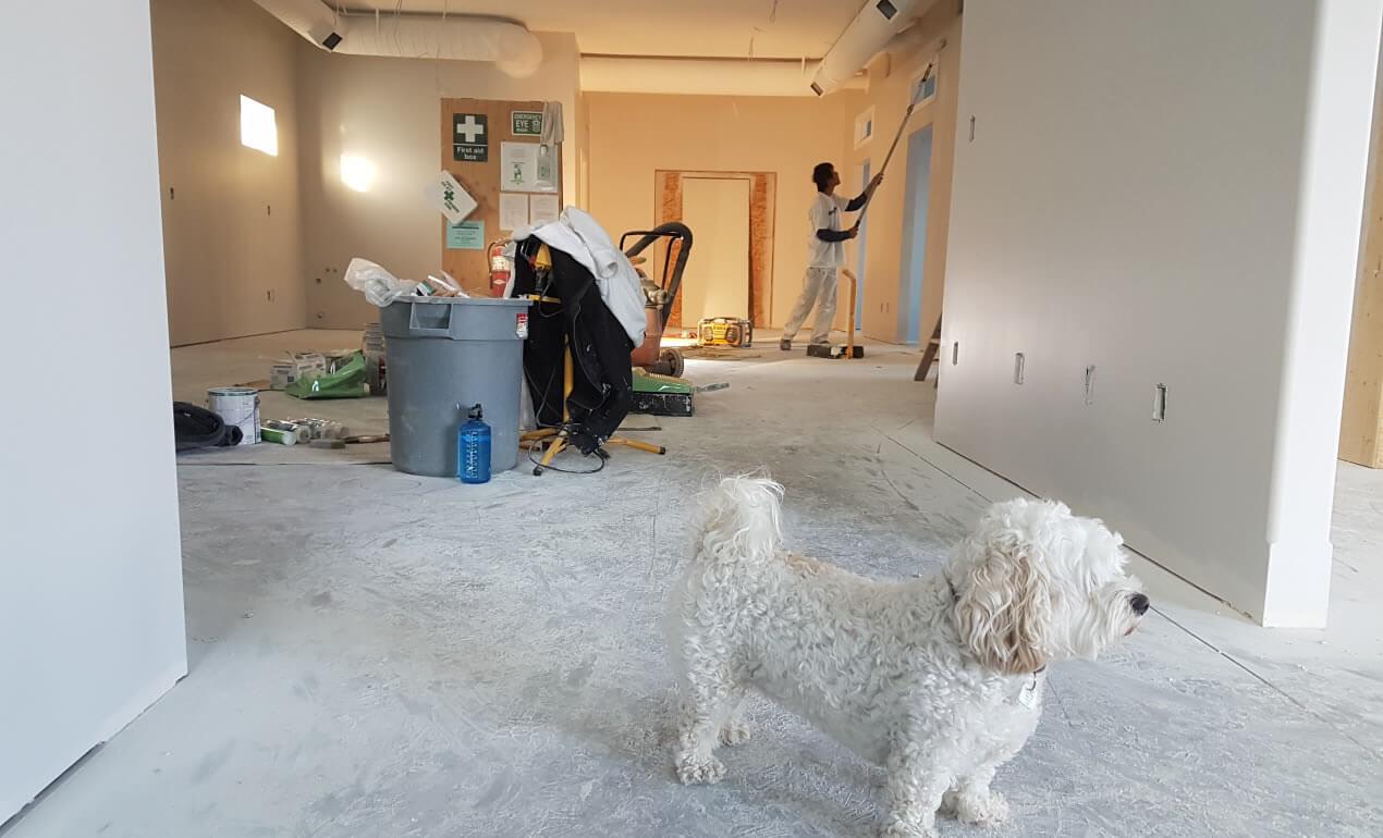 renovare apartament - cladire
